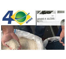Etanol, plástico reciclado: a queda de braço entre preço versus sustentabilidade. E o fator que determina suas escolhas.
